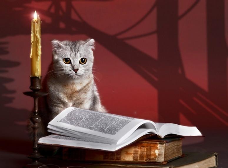 Citate celebre