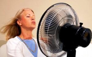 O dieta saraca in grasimi poate elimina simptomele menopauzei
