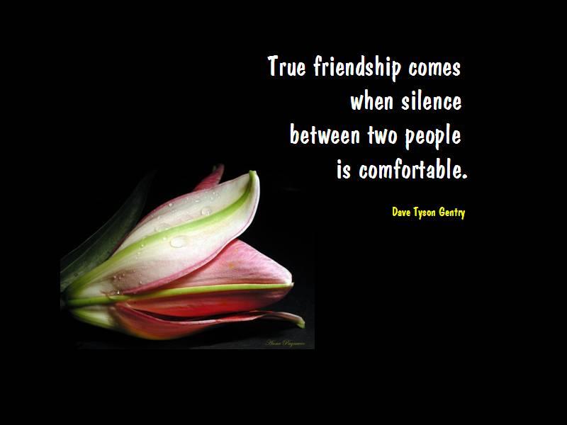 Felicitari de prietenie