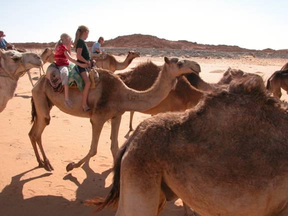Zile de vis in Dahab