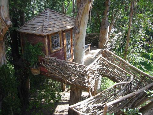 Cum sa construiesti o casuta in copac pentru copilul tau