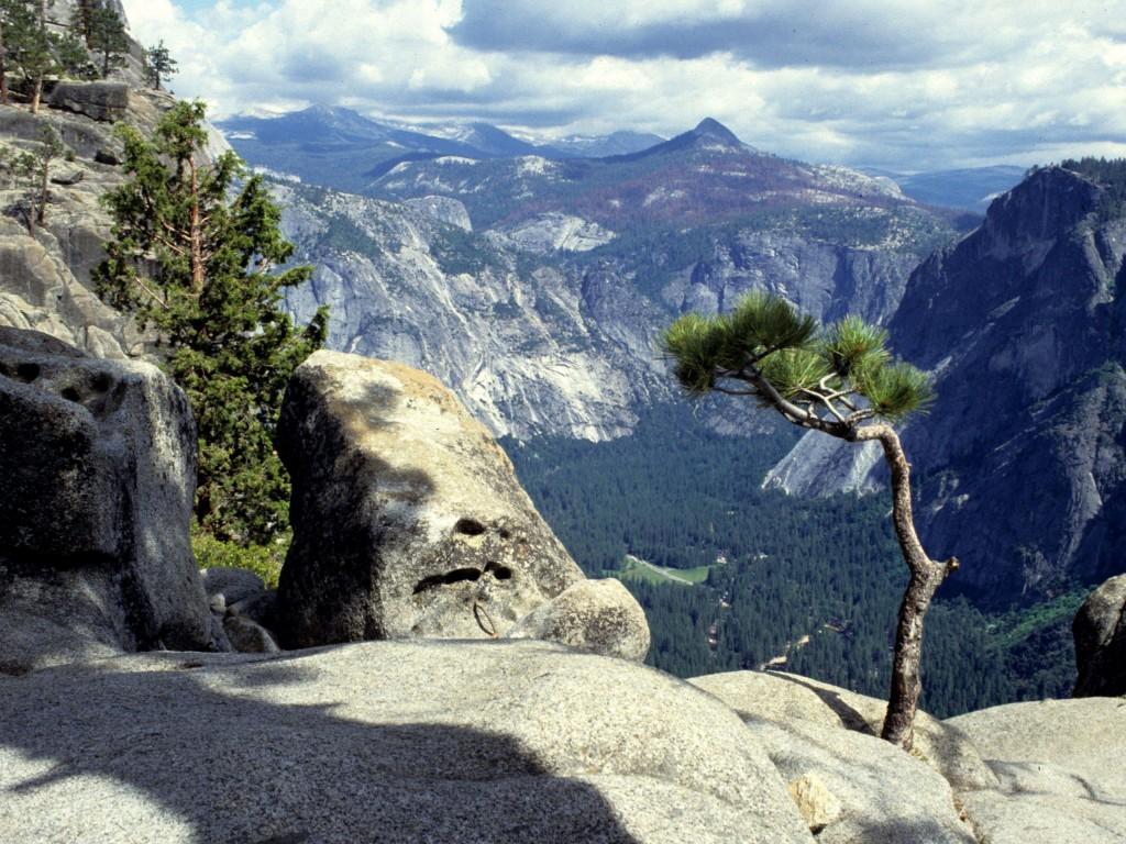 Aventura in Yosemite