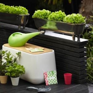 Cultiva-ti propriile legume organice
