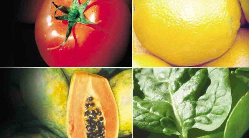 Dieta vegetariana, da sau nu?