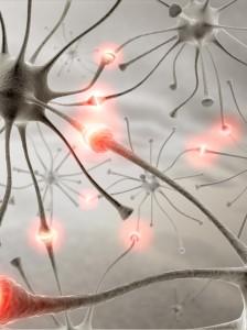 Epilepsia petit mal