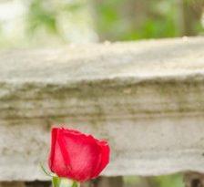 Este iubirea suficienta intr-o relatie?