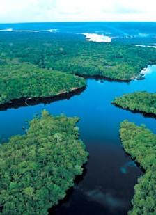 Experienta amazoniana