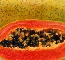 Papaya, mai mult decat sanatate