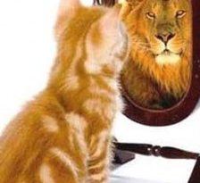 Stima de sine si perceptia pozitiva